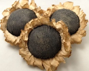Primitive Sunflower Ornies. Bowl Filler, Fall, Gift, Handmade, Primitive, Hand Crafted, Original Design