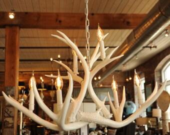 White Real Antler Chandelier, Modern, Mule Deer, High Gloss, Edison Bulbs, Unique Chandelier