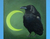 NIGHT watch RAVEN - raven, crow, native american, indian, corvid, love