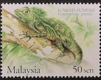 Great angle head lizard Gonocephalus grandis -Handmade Framed Postage Stamp Art 11256