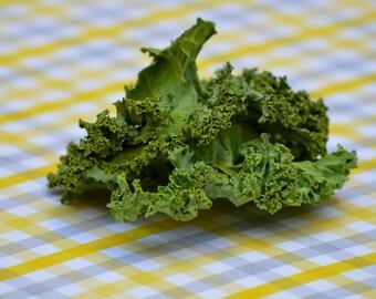 Kale Crispies for Bunnies