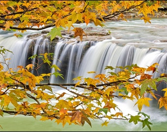 Nature Photography, Waterfall, Falling Water Falls, Richland Creek, Fall Foliage, Yellow, Orange