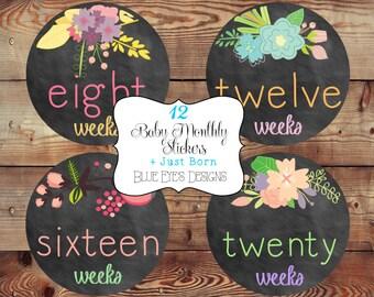 Pregnancy Belly Stickers,Chalkboard Flower Pregnancy Stickers,Bump Stickers, Pregnancy Tracker,Pregnancy Gift P0400