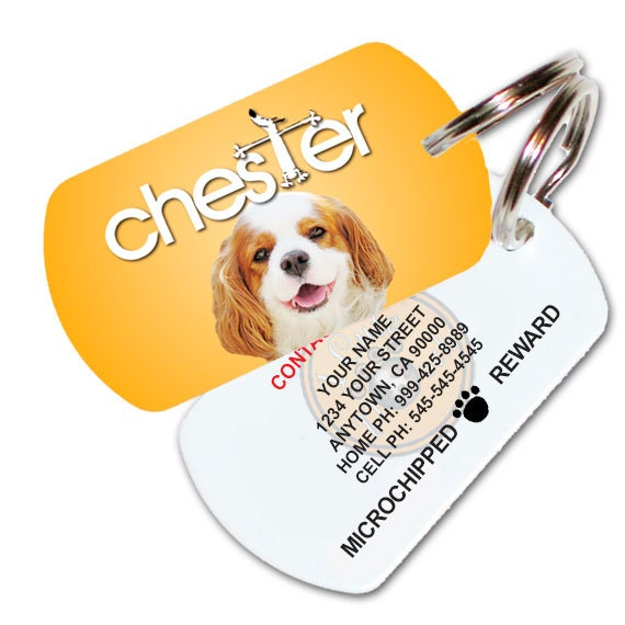 doggly pet id tag dog id tag with free shipping by 1cutepooch