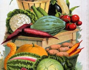 129 Vintage Nursery and Seed Catalog Images