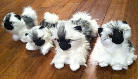 Keeshond Rescue Items similar to Keesh...