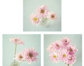 Flower Photography - set of 3 pink flower photos - pale blue, shabby chic decor, still life photography, floral wall art, floral decor