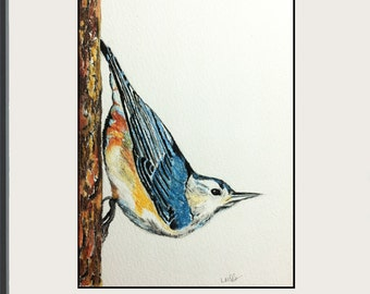 White Breasted Nuthatch - Original Watercolor painting - Bird Illustration 5x7