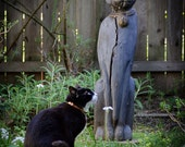 Cat in Meditation, Cat God, Tuxedo Cat, Black and White Cat, Prayer, Feline, Furry, Garden, B/W, Color, Meditation, Quiet