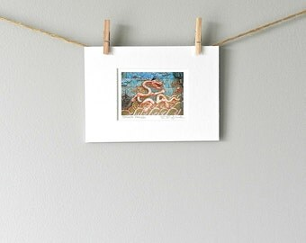 Mini Art Stocking Stuffer, Turquoise Asian Art, Forbidden City Photography, Mini Dragon Art, Chinese Dragon Wall Art,Small Print Asian Decor