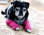 Snuggly Dog Leg Warmers - Pug Leg Warmers - Dog Clothing - Dog Accessories