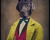 Black Lab Art Black Labrador Animal Photography Dog Print Pet Portrait Gifts for Veterinarians Pet Lover Lonely Pixel 8x10 Print - Oscar