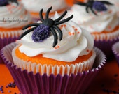 Royal Icing Sparkling Spiders (12)