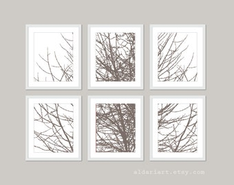 Modern Tree Branches Wall Art - Set of Six 11x14 Prints - Taupe Brown Tree Art Pirnts - Rustic Modern Art - Wall Gallery Art Work