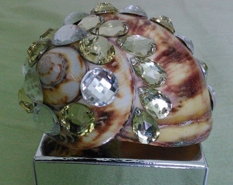 Decorated Coil of Blink Blink Beads Seashell. No 9.