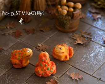 Orange Fairytale Cane Toad - Fairytale Range