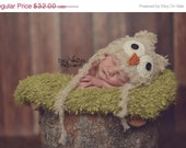 baby Owl Hat.. Newborn owl hat..knit hat... photo prop..Photography prop.....Newborn photo prop..20% off with code VALEN1 at checkout