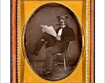 Dog, collage, mixed media, Altered Ambrotype,collage, paper collage, Sepia,Vintage, Gold, Funny, 8x10