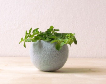Felt succulent planter / felted bowl / Succulent pod / light grey mint green / winter decor