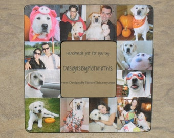 pet memorial frame personalized pet collage picture frame custom dog frame cat frame pet collage picture frame 8 x 8 unique gift