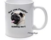 Coffee Lover Gift, Are you Puggin kidding me, Funny Coffee Mug, Novelty Gift, Pug Mug, Dog Mug, Tea Mug, Unique Mug, Pet Owner Gift