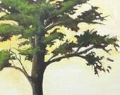 "Medium, Cyprus Tree, Original Acrylic on Panel, 18""x 24"""