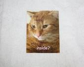 "Existential Edgar Cat Sticker - 1 3"" x 4"" Glossy Kitty Sticker - Purple Comic Sans - Trendy, Meow, Just So Post-Modern, Weird, Mulan Lyrics"