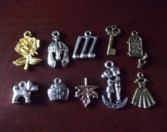 Who's Your Favorite Doctor Companions Charms Rose Song Bride Key Centurion Honeymoon Leaf