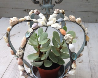 Seashell Crown Fleur de lis Design/ Seashell Planter/Seashell Candleholder