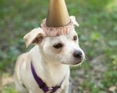 Customizable Party Hats for Pets and Kids