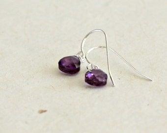 Amethyst Drop Earrings - Girls Earrings February Birthstone Small Dangle Teardrop Purple Cubic Zirconia CZ