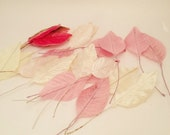 Pink Velvet Millinery Leaves Ivory Satin Millinery Leaves Ivory Velvet Millinery Leaves