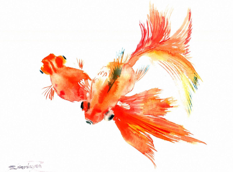 chinese watercolor goldfish