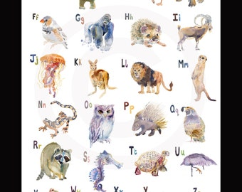 Alphabet  Animal Poster - - Animal Paintings  - Watercolor  Paintings - Nursery Art Print