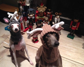 Popular items for reindeer dog hat on Etsy