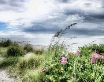 Blowing in the Wind- Fine Art Photography 8x12 print -Vintage, Coastal, Beach, Blue, Green, Pink