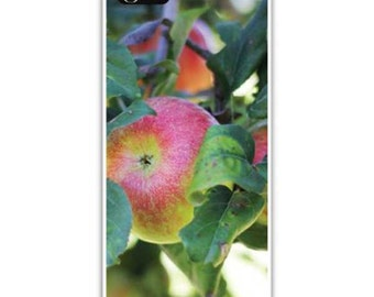 Iphone Case, Fine Art Photography, iPhone 4/4s, iPhone 5/5s, iPhone 6,  Apples on the Branch, Apple Orchard
