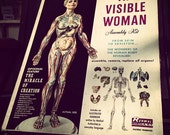 The Visible Woman Assembly Kit (Vintage 1960's)