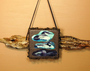 """LOON PHOTO Wall Hanging  -""""LOON Chicks in Autumn """""""