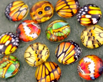 Assorted Butterfly Wings Handmade Photo Glass Cabochon 12mm GD116 (10pcs)