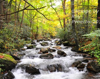 Jones River Rapids, Autumn Colors, Autumn Leaves, Fall Colors, South Carolina, Trees, Mountains, Canvas, Art, Photography, Nature, Landscape