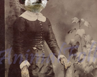 NO MEER LADY meerkat Art  ditigal Mixed Media Collage Print anthropomorphic Victorian steampunk Altered Antique Photograph fashion