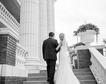cathedral length veil with Alencon lace trim - Dana