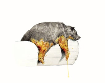 Honey Bather- Limited Edition Print Bear Print