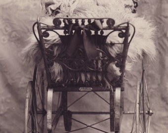 Baby in Beautiful VICTORIAN BABY CARRIAGE Cabinet Photo Circa 1890 Rochester Minnesota