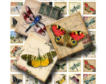 Butterflies and Dragonflies  - Digital Collage Sheet  - 1 inch (1 x 1) - INSTANT DOWNLOAD