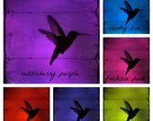 "Hummingbird PILLOW 16"" 18"" 20"" square Jewel tones Pink Green Blue Red Purple you choose Throw Pillow"