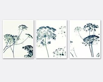 Black and White Photography Set 8x10 11x14 Botanical Minimal botanical Wall Decor, wall art