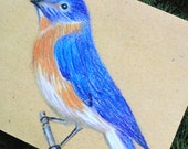 Blue Bird Blank Note Card