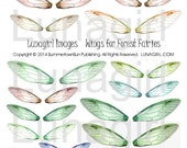 FAIRY WINGS collage sheet DOWNLOAD altered art fairies printable digital ephemera dragonfly faerie green orange brown woodland forest colors